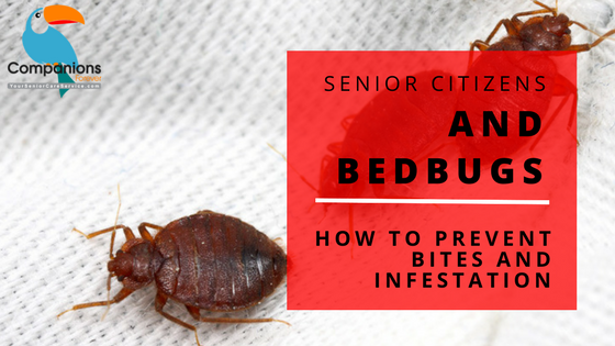 Senior Citizen Home Care - Prevent Bed Bugs